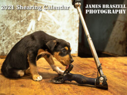 2021 Calendar - James Braszell Photography