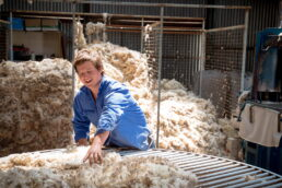 Fleece On The Wool Table - James Braszell Photography