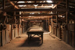 Shearing Board Toganmain Woolshed - James Braszell Photography