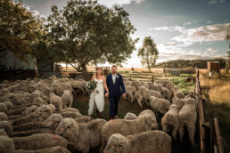 wedding photography 07 uai — James Braszell Photography